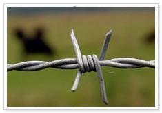 Dare 14 Gauge Premium Aluminum Electric Fence Wire (Length: 1,320